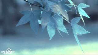 Dynamic Illusion & Mango   I Need It (Soundstorm Remix)