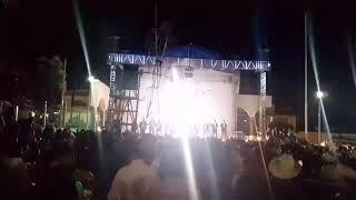 Fiestas copala jalisco 2017