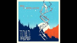 Watch Toad The Wet Sprocket Rare Bird video