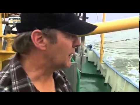 Krabbenkrieg