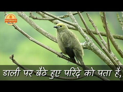 Good Morning Video Song || Whatsapp Status videos || Motivational Thoughts 2018