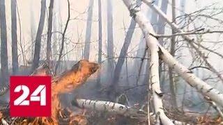 Смотреть видео В Иркутской области природные пожары вплотную подобрались к городам - Россия 24 онлайн