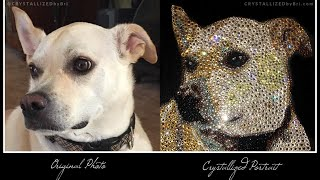 Canvas Swarovski Crystal Dog Portrait Crystallized Bling by CRYSTALL!ZED by Bri Keepsake Picture