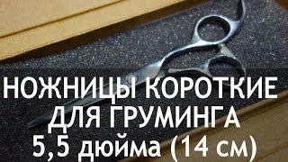 Ножницы для груминга прямые короткие 5,5 дюйма (14 см) CY-31