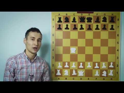 Как называются фигуры в шахматах
