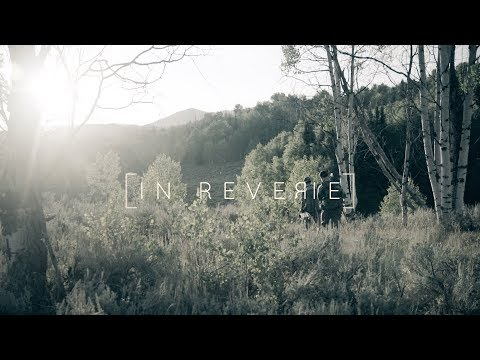 IN REVERIE - A Traditional Archery Utah Elk Film