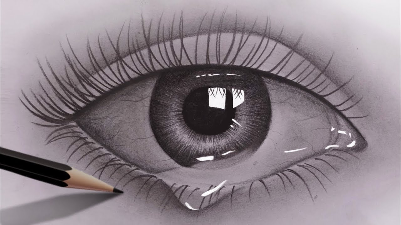 How To Draw Realistic Eyes For Beginners With Pencil Pencil Sketch Video Easy To Draw Youtube