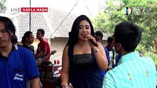 Download lagu Wakoplak raine mlorod - Gendeng Mlorod - Tria Aulia - NAELA NADA Live Gebang Kulon