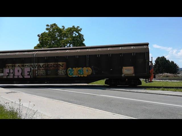 Tovorni vlak iz papirnice Koli?evo