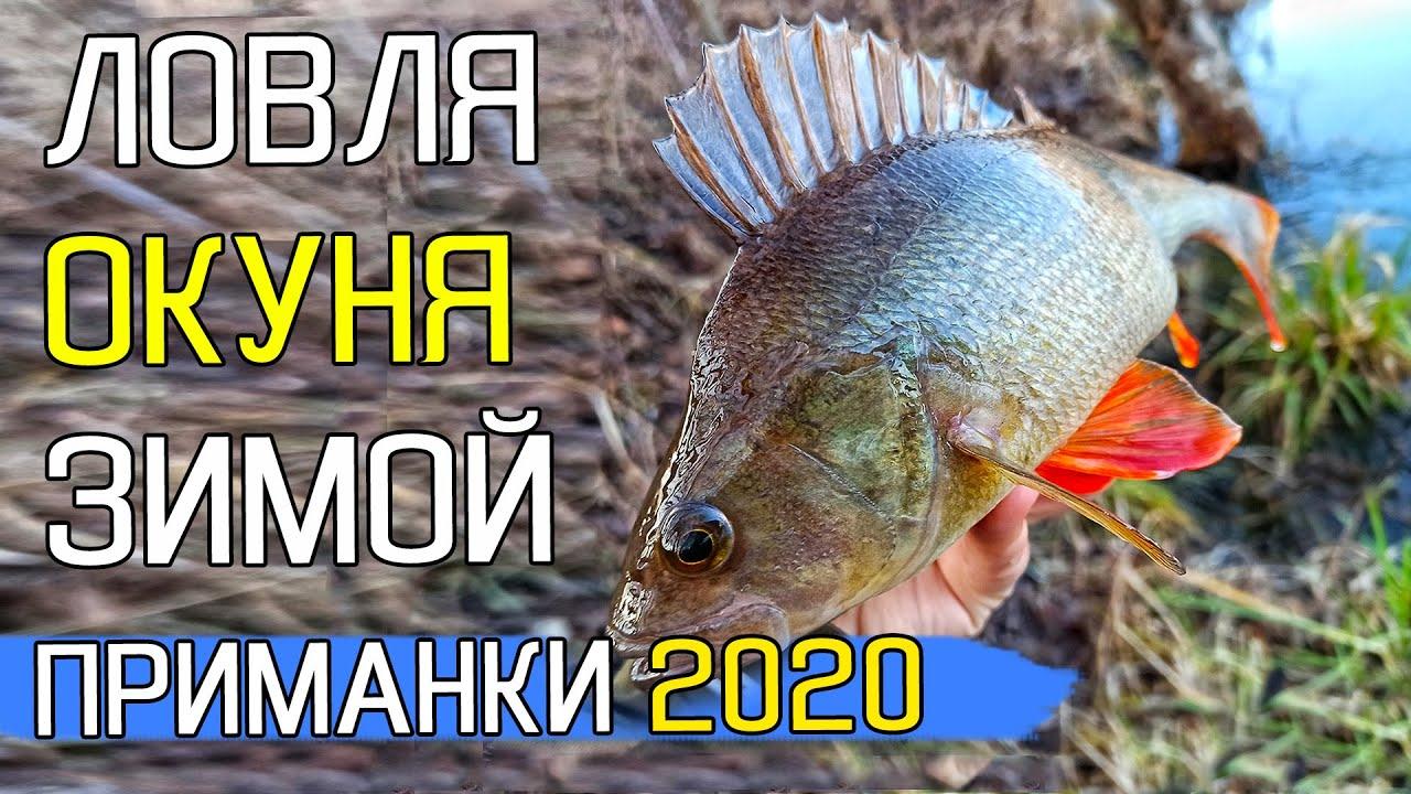 ЛОВЛЯ ОКУНЯ ЗИМОЙ НА СПИННИНГ! Приманки на окуня. Рыбалка на спиннинг 2020