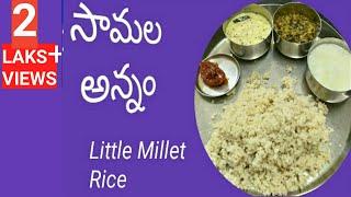 సామల అన్నం   Little Millet Rice