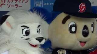 2012 6/6 交流戦 試合前 レオ ライナ ドアラ写真撮影会