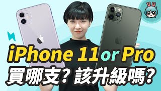 iPhone 11 VS 11 PRO CP值對決