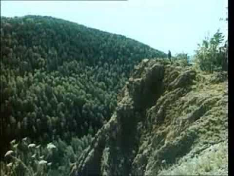 Download Kunak - Aventuri in taiga (film rusesc cu subtitrare in limba romana)