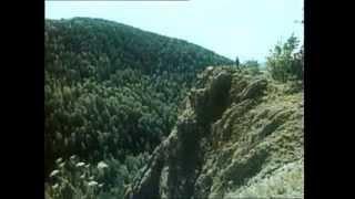 Kunak - Aventuri in taiga (film rusesc cu subtitrare in limba romana)