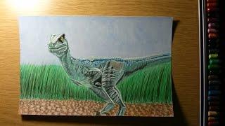 Drawing Velociraptor