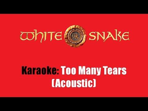 Karaoke: Whitesnake / Too Many Tears (Acoustic)