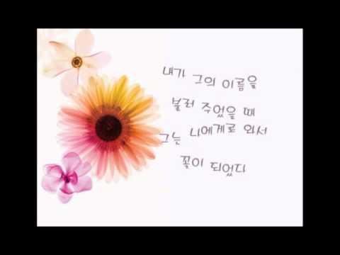 김춘수 꽃