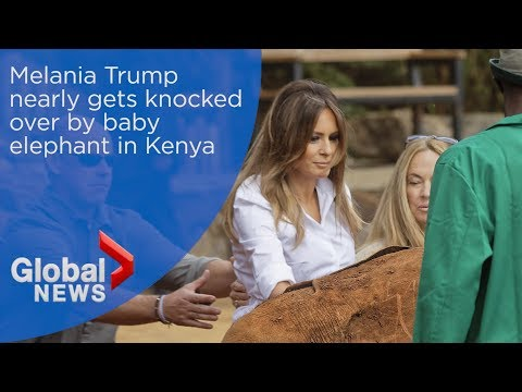 Melania Trump nearly gets knocked over by baby elephant in Kenya