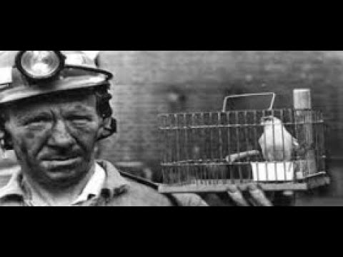 Out In The Coal Patch: Life In The Coal Mining Towns Of Western Pennsylvania