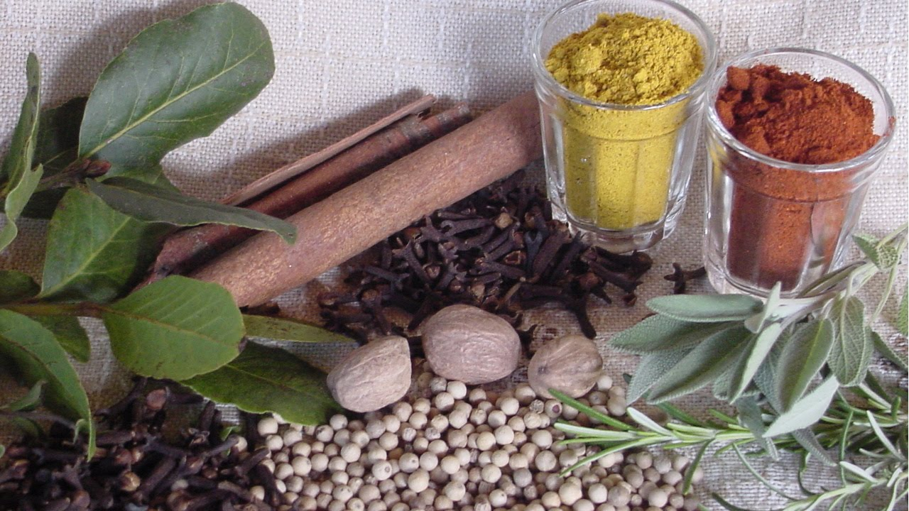 Plantas Medicinais Lista de Cursos Online