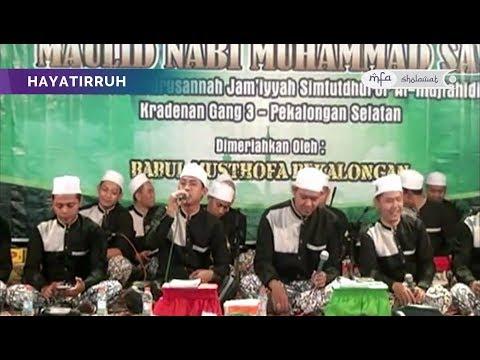 BABUL MUSTHOFA YA HAYATIRRUH (New) Live Kradenan - Pekalongan Selatan   MFA Sholawat