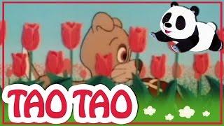 Tao Tao - 18 - ענני הזברה