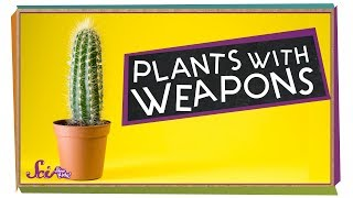 Plants with Weapons!