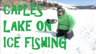 Caples Lake Ice Fishing California Rainbow Trout with the Jaw Jacker and Marcum