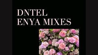 Dntel - A Day Without Rain (Enya Mixes)