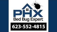 Peoria AZ Bed Bug Exterminator - 623-552-4815 | Bed Bug Treatment