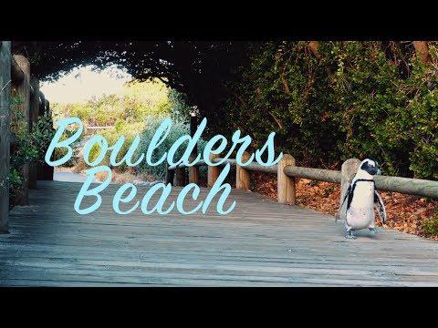 Cape Town - Boulders Beach - Não Empolga Marina #22