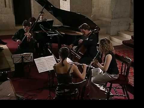 Schoenberg/Webern: Kammersymphonie op.9 ⎪ Braunstein, Brill, Schwarzman, Maninger, Aner