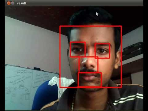 TechnoLabsz: OpenCV Face+Nose+Mouth+Eye concurrent detection
