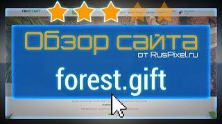 Обзор сайта forest.gift - независимая экспертиза