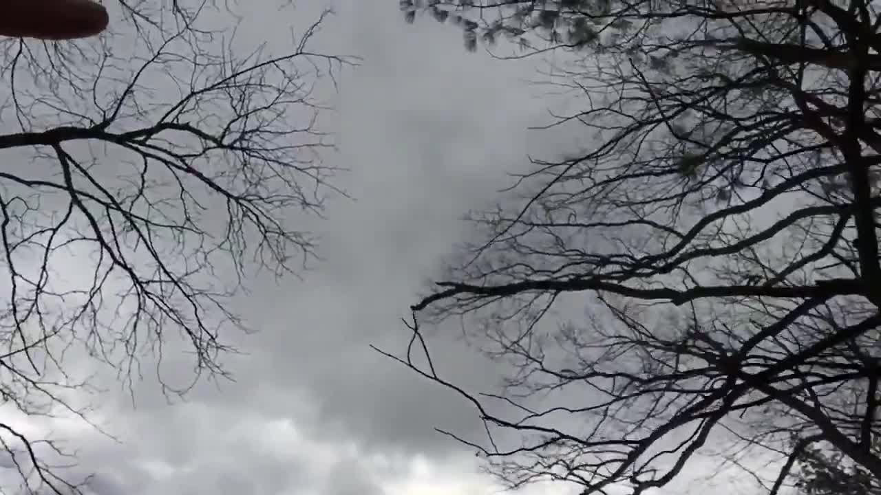 Reporter Update: Crews Continue Cleaning Downed Trees In Andover