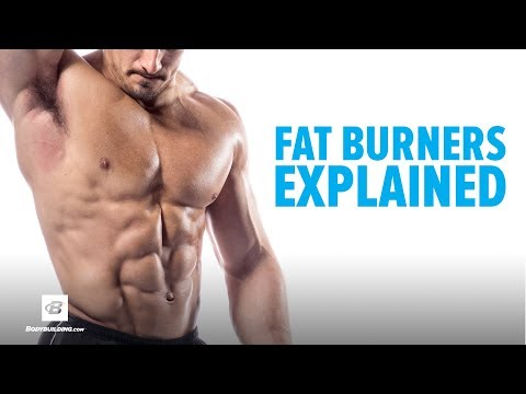 Fat Burners Explained | Brain Gainz
