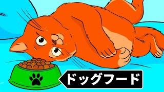 猫がドッグフードを食べられない理由 他、面白い事実