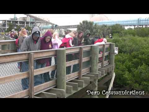 Manatee Viewing Center - Tampa Bay, Florida
