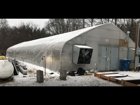 January Weather In Memphis TN & My Greenhouse