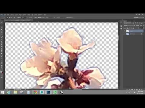 Creating and Using Alpha Channels - TGA/Targa Image Creation (Adobe Photoshop)