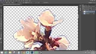 Creating and Using Alpha Channels - TGA/Targa Image Creation (Adobe Photoshop)