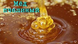 видео купить мед в Москве