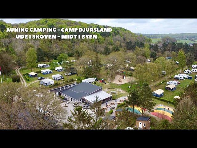 Auning Camping kaldes også Djurslands perle pga sin smukke placering. Peer Neslein besøger pladsen.