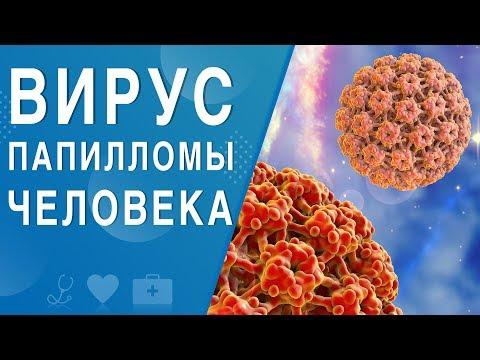 Вирус папилломы человека. На здоровье 28.12.2019