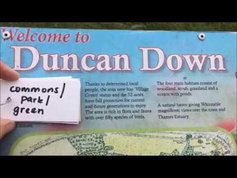 Requiem for Duncan Downs : Critical Property Concepts