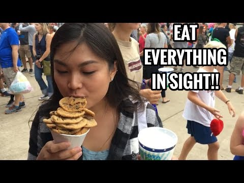 WHAT WE ATE AT THE MINNESOTA STATE FAIR 2017 | DEEP FRIED EVERYTHING ON A STICK