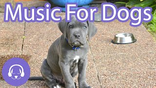 Music For Dogs - Deep Sleep Relaxation Sounds for Dogs - NEW 2021