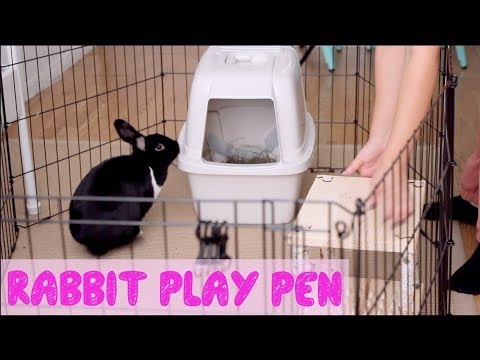 How To Set Up A Rabbit Play Pen Youtube