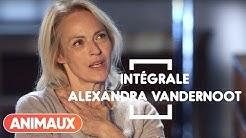 Alexandra Vandernoot dans Animaux Stars (intégrale) - Animaux